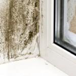 disrepair housing solicitor manchester